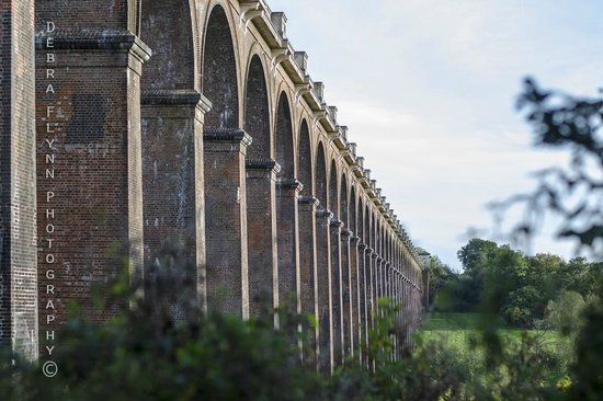 Side view of Ouse Valley Viaduct