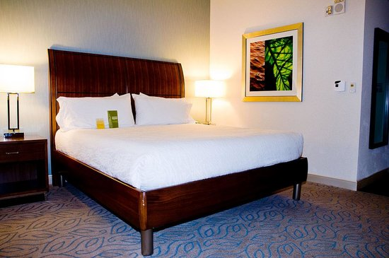 Hilton Garden Inn Atlanta Midtown: Room Interior 1