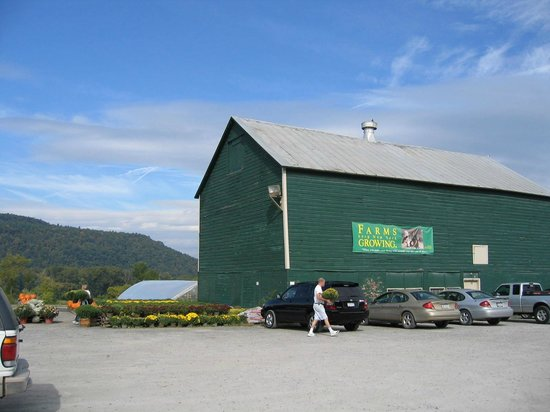 Schoharie Valley Farms/The Carrot Barn: Carrot Barn