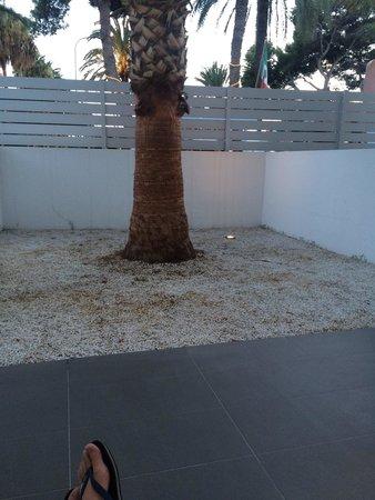 Migjorn Ibiza Suites & Spa : Garden