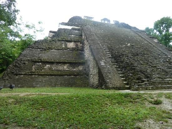 La Casa De Don David : Tikal