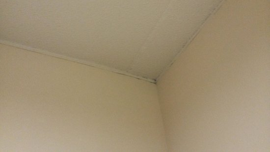 Days Inn Berlin Meriden: moldy ceiling