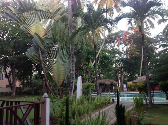 La Residencia del Paseo : un beau jardin tropical autour de la piscine