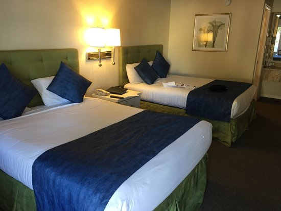 Quality Inn Maingate West: 2 comfy queen beds