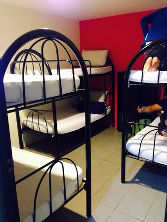 Backpacker's Stay: Dormitory