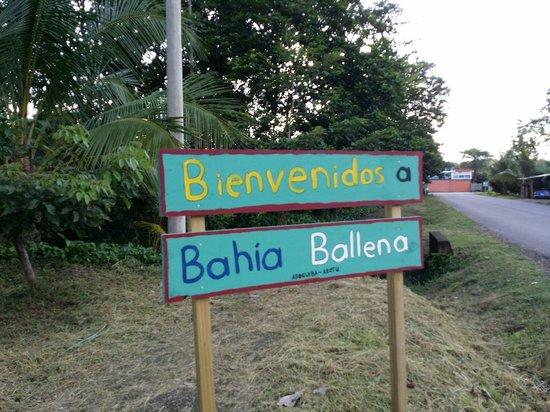 Ballena, Costa Rica: Bienvenidos!