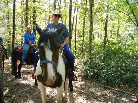 Riverside Riding Stables : Trail ride in the mountains