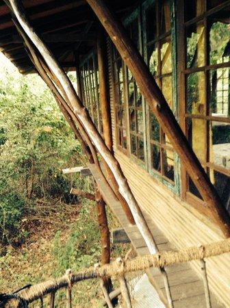 Galkadawala Forest Lodge : Room window