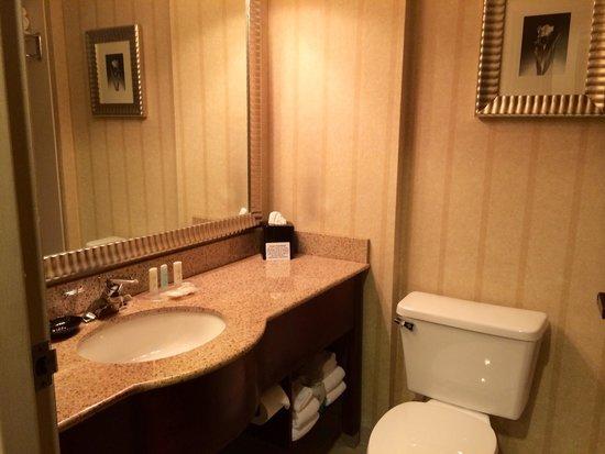 Comfort Suites Perimeter Center: Updated bath