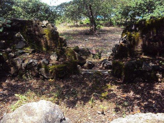 Mezcala Island: Algunas ruinas