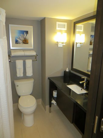 Holiday Inn Pointe Claire Montreal Airport : Bathroom