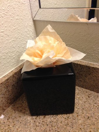 Wyndham Garden Austin: Extra touch:  Tissue rose on top of the tissue container.