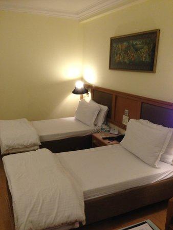 Hotel Chanakya : double room