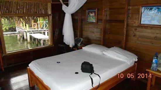 Coral Cay Cabins: la habitación
