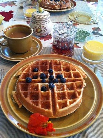 Johnnycake Flats Inn: Homemade sourdough waffles