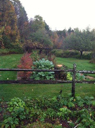 Johnnycake Flats Inn: One of the many gardens
