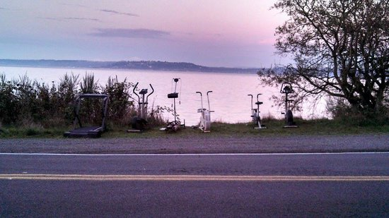 Vashon Island: Workout equipment graveyard.