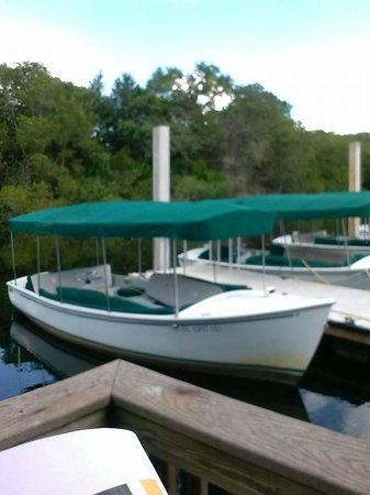 Conservancy of Southwest Florida : Electric Boat