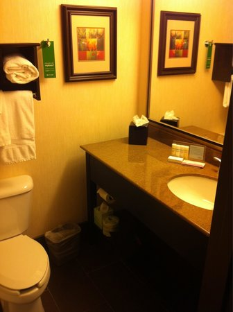 Hampton Inn Loveland: Bathroom