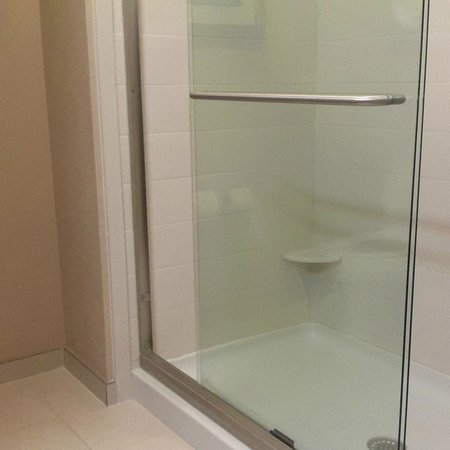 Hampton Inn and Suites Ocala : spacious shower