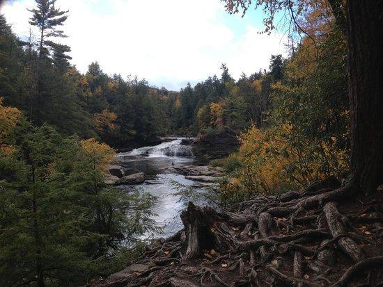 Swallow Falls State Park : Swallow Falls