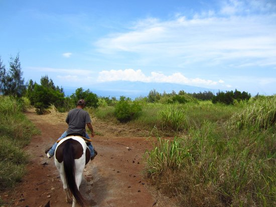 Ironwood Ranch : Our guide and the view