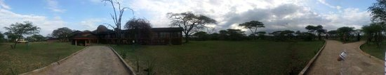 Seronera Wildlife Lodge : veiw