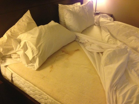 Hilton Garden Inn Indianapolis Northwest: stained mattress. why haven't they tossed it? sheesh!