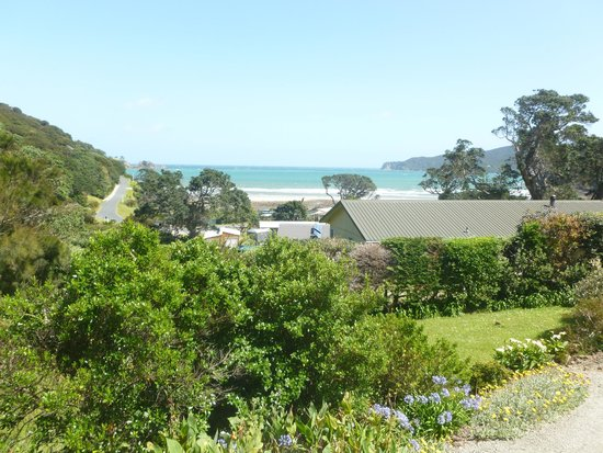 Manuka Lodge: View from room