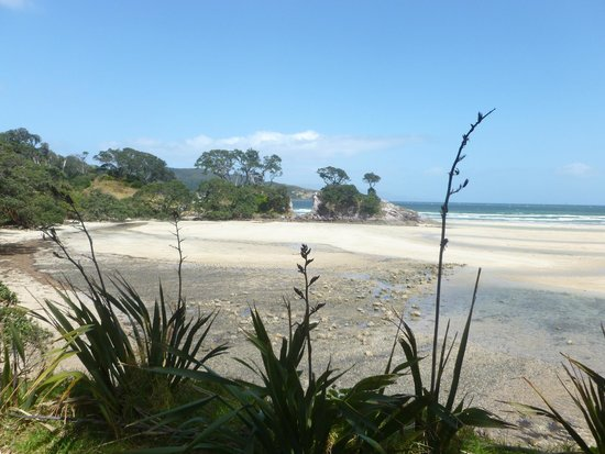 Manuka Lodge: Beach