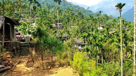 Double Decker Living Root Bridge: Beautiful Nongriat Village