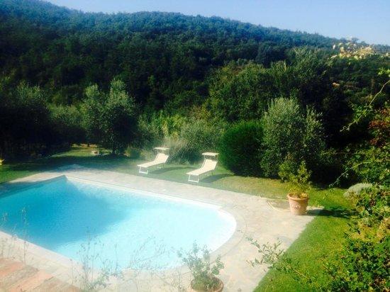 Azienda Fontelunga: pool