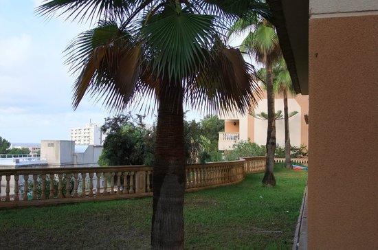 Hotel Seramar Sunna Park: ons uitzicht vanaf balcon