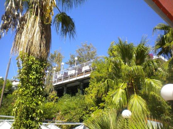 Kusadasi Club & Bar : pine bay avec le grand chef