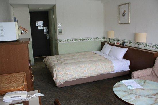 Palace Side Hotel: hab 605