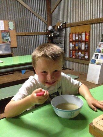 Lake Barrine Tea House, Restaurant And Cottage Accomodation : Camp kitchen tea