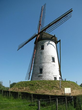 The Pink Bear Bicycle Company : Windmill between Bruges and Damme