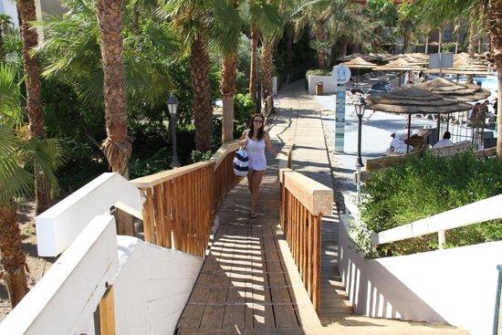 U Coral Beach Club Eilat : hotel graund