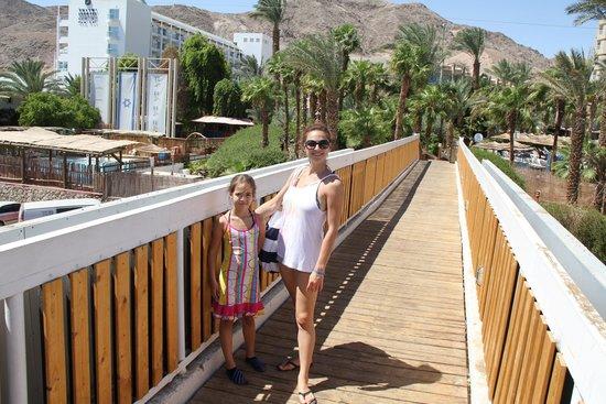 U Coral Beach Club Eilat : bridge to the beach