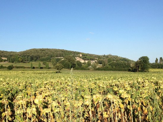 Relais Borgo di Toiano: Vista da lontano