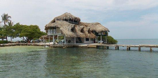 Isla Tintipán, Colombia: Cabaña el Palomar