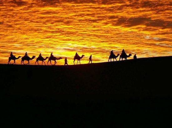 Top Desert