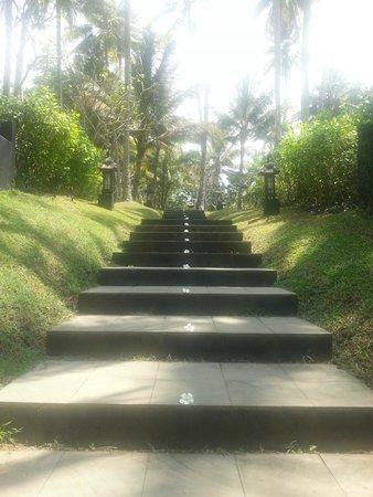 Kelapa Retreat Bali: Der Weg ins Paradies