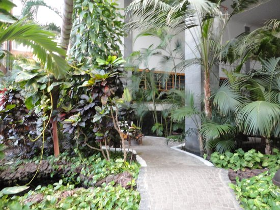 Princesa Yaiza Suite Hotel Resort: Indoor Garden 3