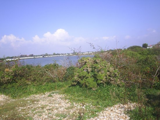 Church Farm Holiday Park - Haven: Pagham Lagoon with caravans in the background.