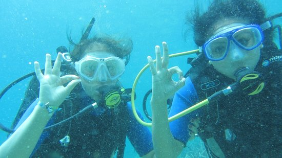 Skiathos Diving Center : cant wait to do it again!!