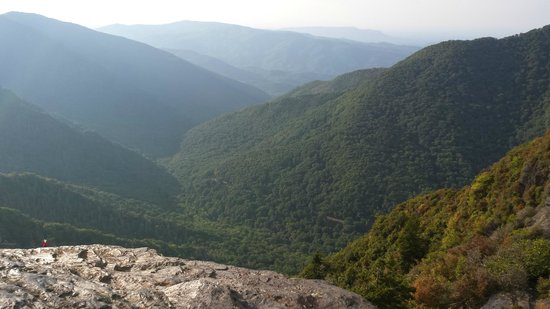 Chimney Tops : view from the top