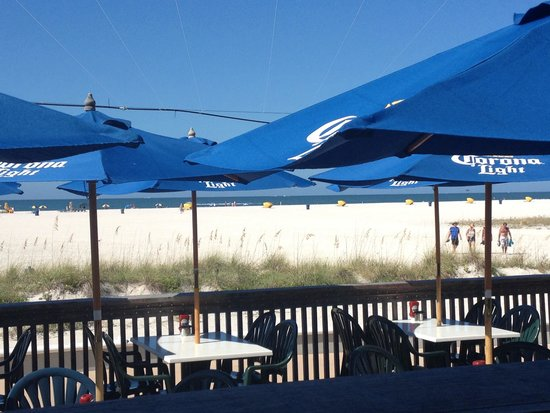 Best Beach Food And Setting In Pinellas County Review Of Sloppy