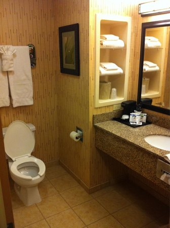 Holiday Inn Express Gillette : Bathroom