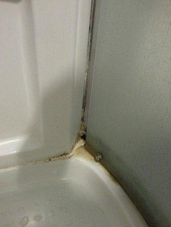 Home@36 : Dusche / Shower
